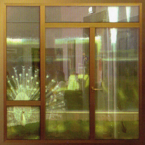 """Lorenzo Pizzanelli, """"Aria di vetro"""""""